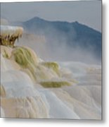 Mammoth Beauty Metal Print