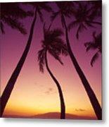 Maui Palms Metal Print