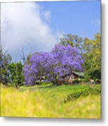 Maui Upcountry Metal Print