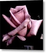 Mauve Flower Metal Print by Mohammed Nasir