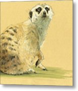Meerkat Or Suricate Painting Metal Print