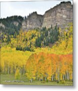 Million Dollar Highway Aspens Metal Print