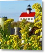 Monarch At East Point Light Metal Print