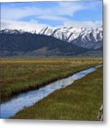 Mono County Nevada Metal Print