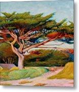 Monterey Cypress Metal Print