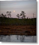 Moon Over Wetlands Metal Print
