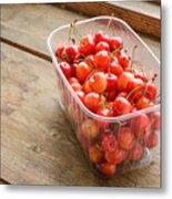 Morello Cherries Metal Print