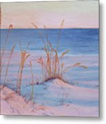 Morning Beach Metal Print
