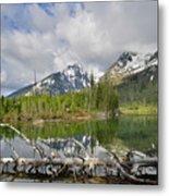 Morning Reflection On String Lake Metal Print