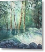 Mosquito Creek 2 Metal Print