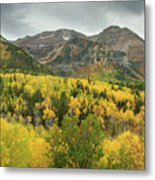 Mount Timpanogos Fall Colors Metal Print