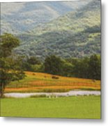 Mountain Farm With Pond In Artistic Version Metal Print