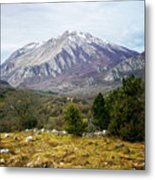 Mountains In The Background X Metal Print