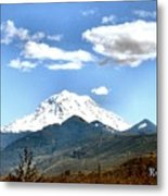 Mt Rainier Washington Metal Print
