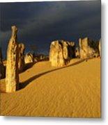 Nambung Desert Australia 1 Metal Print