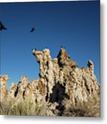 Natural Rock Formation And Wild Birds At Mono Lake, Eastern Sier Metal Print