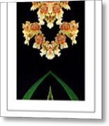 Nature In Abstract Orchidaceae Metal Print