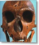 Neanderthal Skull Metal Print