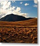 New Zealand Landscape Metal Print