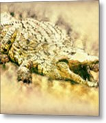 Nile River Crocodile Metal Print
