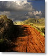 Noble Road Metal Print