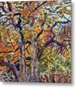 October Colors Metal Print
