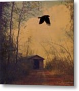 Lone Crow Flies Over The Old Country Road  Metal Print