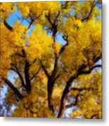 Old Giant  Autumn Cottonwood Orton Metal Print