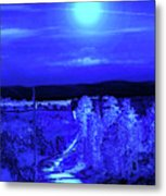 On A Cold Cold Night Metal Print