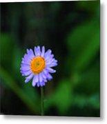 One Little Wildflower Metal Print