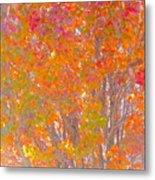 Orange And Red Autumn Metal Print