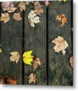 Original Autumn Foliage Metal Print