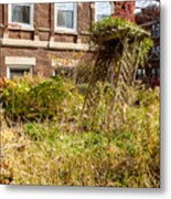 Overgrown Fall Garden Metal Print