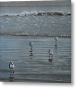 Padre Island Shore Birds Metal Print