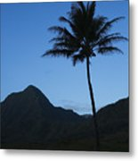 Palm And Blue Sky Metal Print