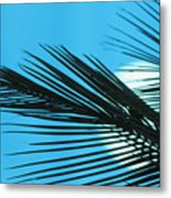 Palm Frond Silhouette Metal Print
