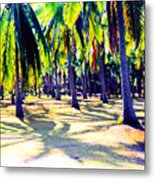 Palm Leaves Against The Sky 3 Ae  Metal Print