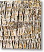 Palm Trunk Metal Print