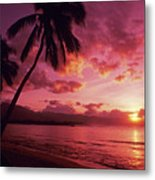 Palms Against Pink Sunset Metal Print