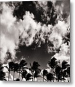 Palms Blowing In The Wind Metal Print