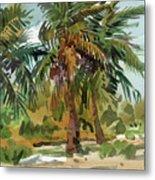 Palms in Key West Metal Print