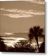 Palms In The Clouds Metal Print