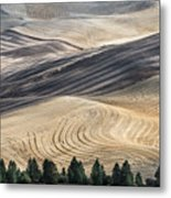 Palouse Field 2740 Metal Print