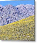 Panoramic View Of Desert Gold Yellow Metal Print