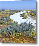 Panoramic View Of White Salt And Desert Metal Print