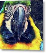 Parrot Art  Metal Print
