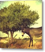 Pause For Thought Metal Print