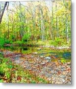 Pennsylvania Stream In Autumn, Digital Art Metal Print