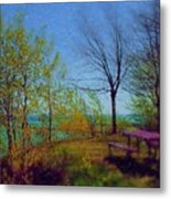Picnic Table By The Lake Metal Print