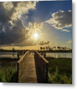 Pine Glades Sunset Metal Print